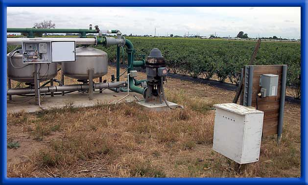 AC Ag Well Water - Drip Irrigation - Blueberries