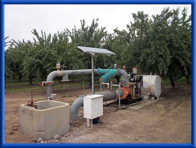 DC AG - Almonds - Well and Ditch Water