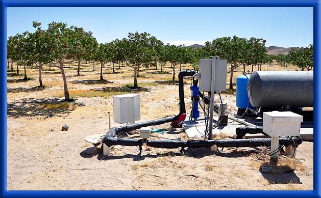 AC Fresh Water and Ag Unit - Young Pistachios - Mojave Desert
