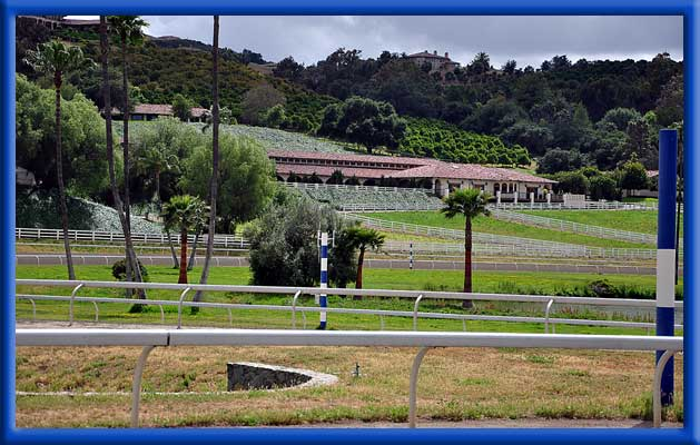 Water Changers Treating Avocados, Citrus, and Horse Facilities - Bonsall, Ca.
