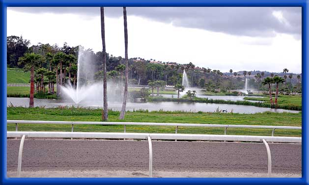 Fountains, Ponds, and Landscape Treated - Bonsall, Ca.